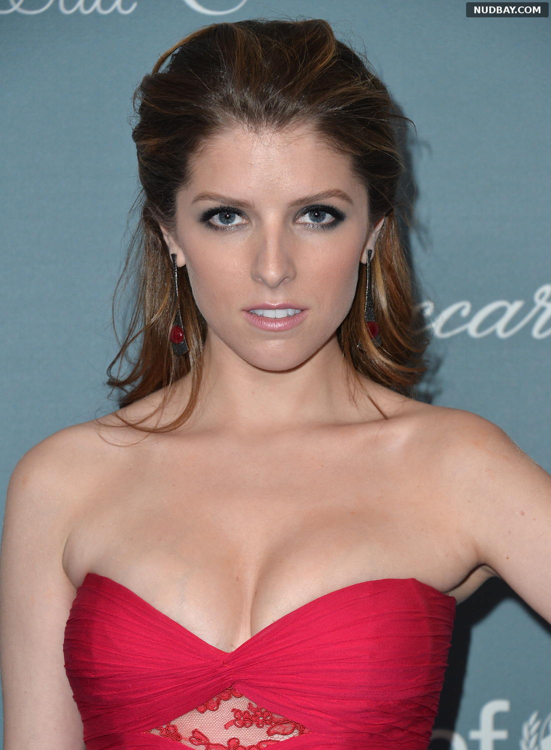 Anna Kendrick attends the 2014 UNICEF Ball Presented By Baccarat in Beverly Hills Jan 14 2014